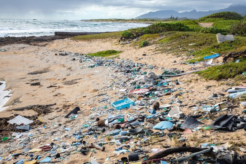 Trump Administration Sued For Failing To Protect Hawaiian Waters From Plastic Pollution